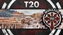 Т20: Мелкий